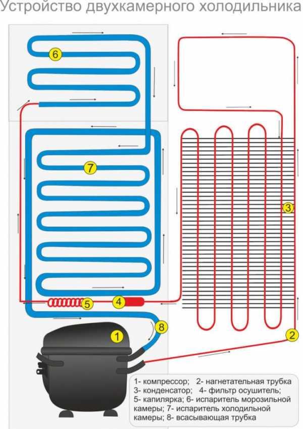 Как устроен двухкамерный холодильник атлант
